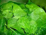 a photo of fresh spinach nautral source of glutamine