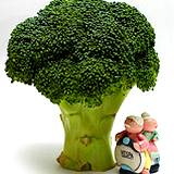 photo of a sprig of broccoli on the antioxidant list