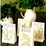 fresh herbs in vase and a bags of dried herbs on table