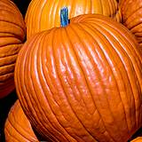 a photo of a stack of fresh pumpkins a natural source of vitamin A