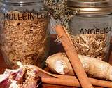photo of natural herbal treatments for respiratory system infection