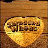 a photo of a field of wheat with the words